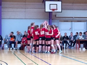 volleypiger dm